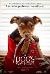 A Dog's Way Home (2019) เพื่อนรักผจญภัยสี่ร้อยไมล์