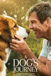 A Dog's Journey (2019) หมา เป้าหมาย และเด็กชายของผม 2