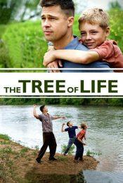 The Tree of Life (2011): ต้นไม้แห่งชีวิต